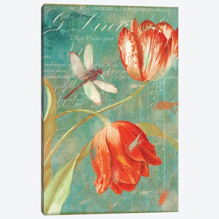 Mandarin Tulips Canvas Print #CBY590} by Color Bakery Canvas Wall Art