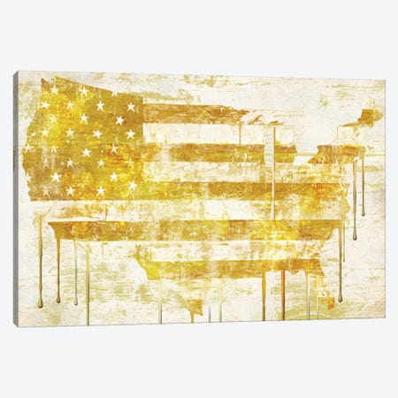 American Dream I Canvas Print #CBY5} by Color Bakery Canvas Artwork
