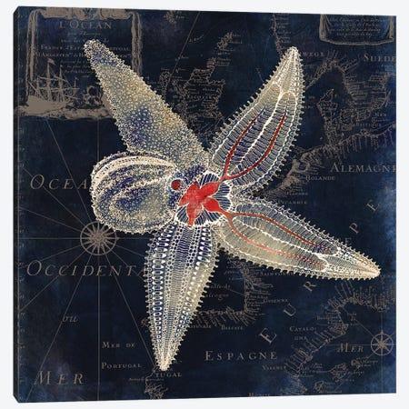 Maritime Blues IV Canvas Print #CBY600} by Color Bakery Canvas Art