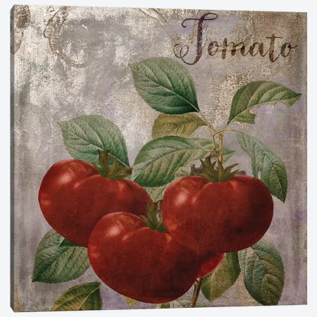 Medley Gold Tomato Canvas Print #CBY607} by Color Bakery Canvas Art Print