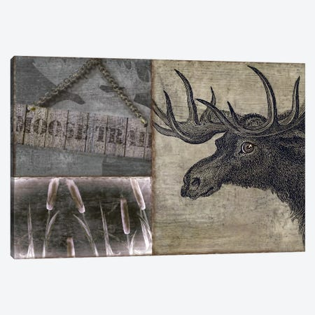 Moose Canvas Print #CBY639} by Color Bakery Canvas Print