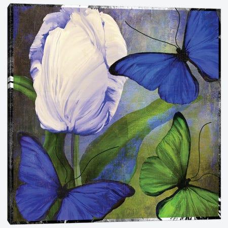 Morphos I Canvas Print #CBY646} by Color Bakery Canvas Art Print