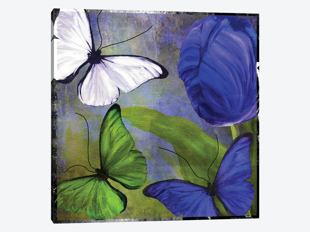 Morphos II by Color Bakery 1-piece Canvas Print