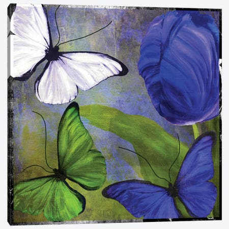 Morphos II Canvas Print #CBY647} by Color Bakery Canvas Print
