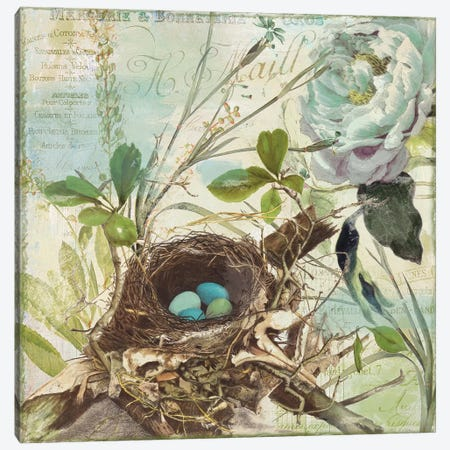 Nesting II Canvas Print #CBY657} by Color Bakery Canvas Wall Art