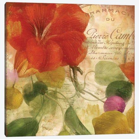 November Canvas Print #CBY665} by Color Bakery Art Print