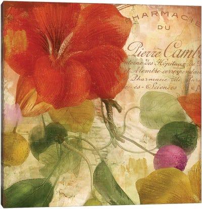 November Canvas Art Print
