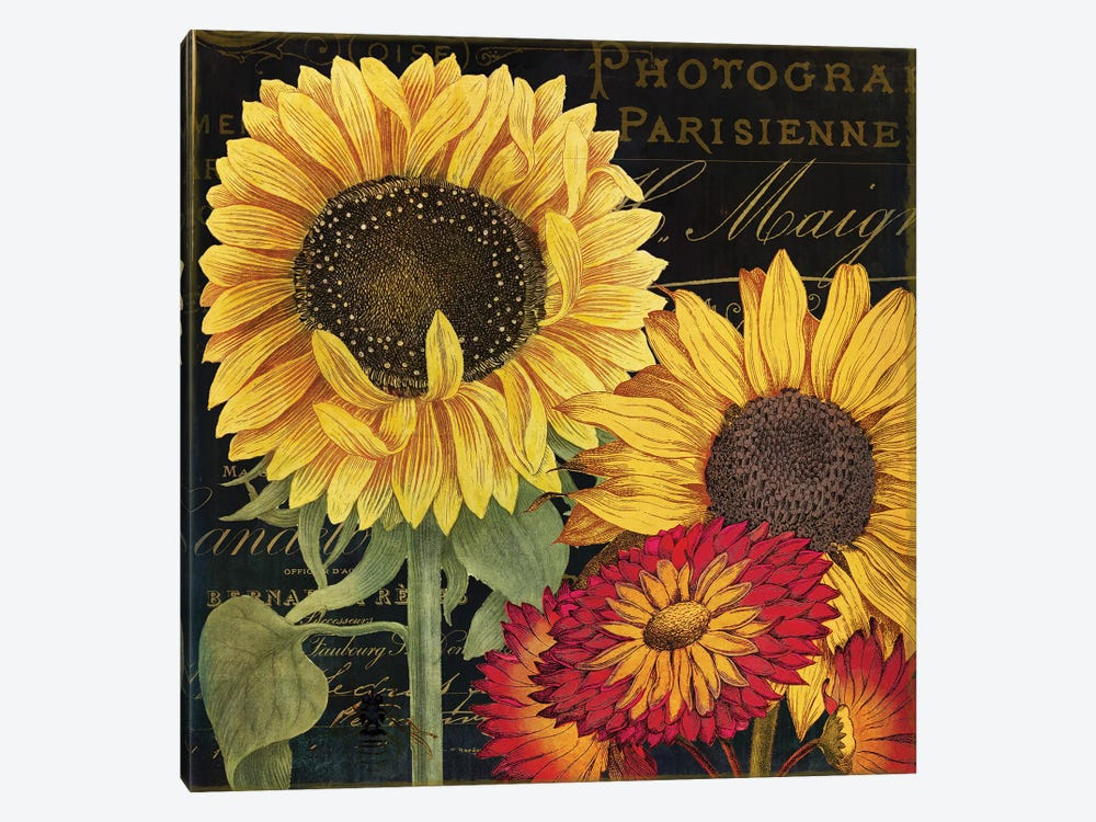 October Sun I by Color Bakery 1-piece Canvas Wall Art