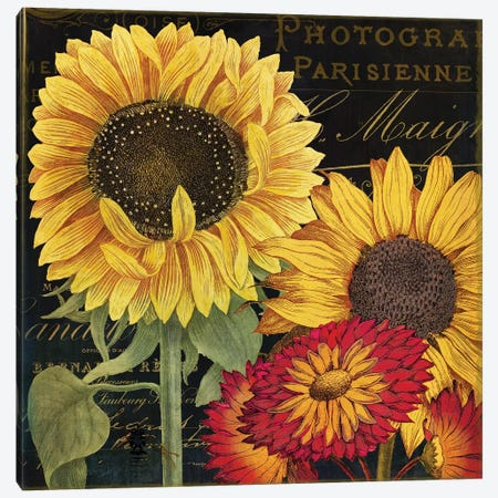 October Sun I 3-Piece Canvas #CBY668} by Color Bakery Canvas Art