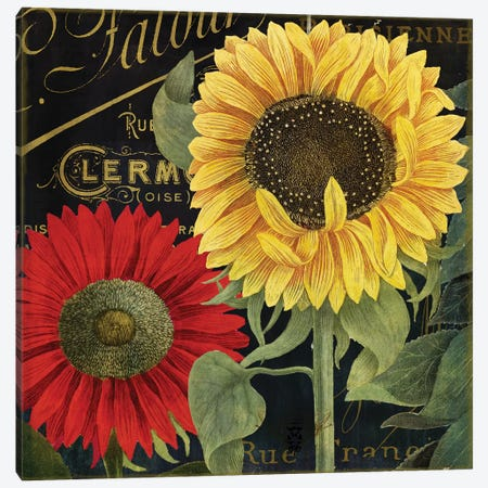 October Sun II Canvas Print #CBY669} by Color Bakery Canvas Artwork