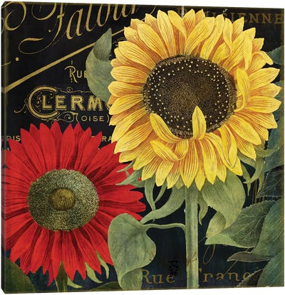 October Sun II Canvas Art Print