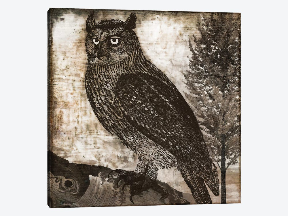 Owl II by Color Bakery 1-piece Art Print