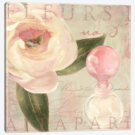 Parfum de Roses II Canvas Print #CBY708} by Color Bakery Canvas Art Print