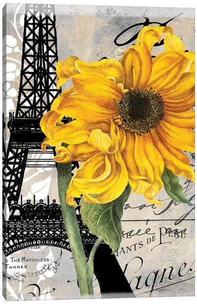 Paris Blanc III Canvas Art Print