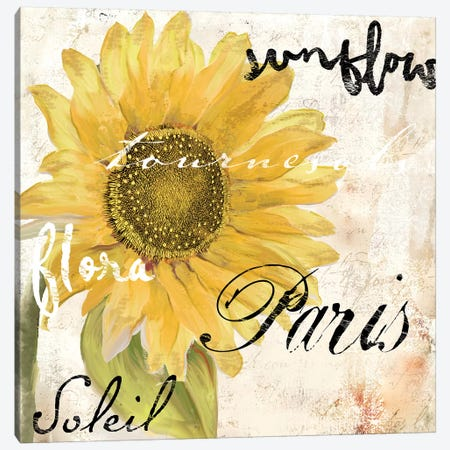 Paris Songs I Canvas Print #CBY726} by Color Bakery Canvas Artwork