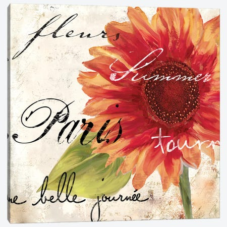 Paris Songs II Canvas Print #CBY727} by Color Bakery Canvas Artwork
