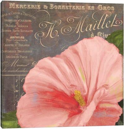 Peach Hibiscus Canvas Art Print