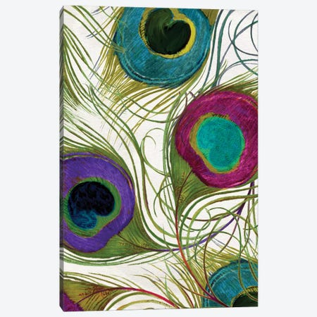 Peacock Feathers I Canvas Print #CBY754} by Color Bakery Canvas Print