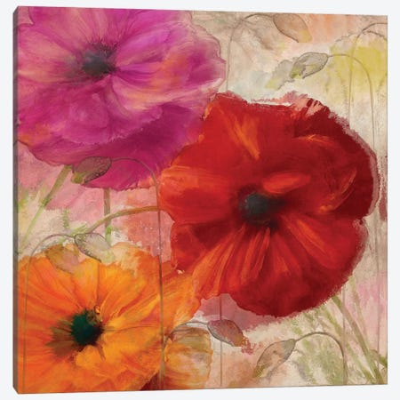 Penchant For Poppies I Canvas Print #CBY756} by Color Bakery Canvas Print
