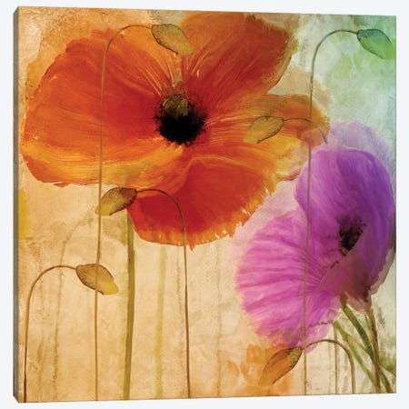Penchant For Poppies II Canvas Print #CBY757} by Color Bakery Art Print