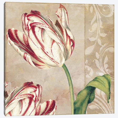 Peppermint Tulips I Canvas Print #CBY762} by Color Bakery Canvas Print