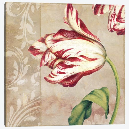 Peppermint Tulips II Canvas Print #CBY763} by Color Bakery Art Print