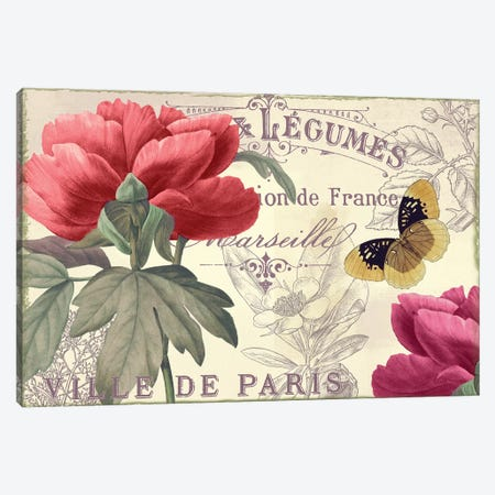 Petals Of Paris V Canvas Print #CBY777} by Color Bakery Canvas Art Print