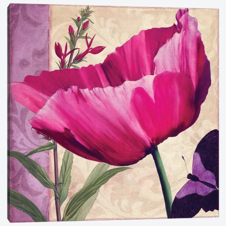 Pink Poppy I Canvas Print #CBY784} by Color Bakery Canvas Wall Art