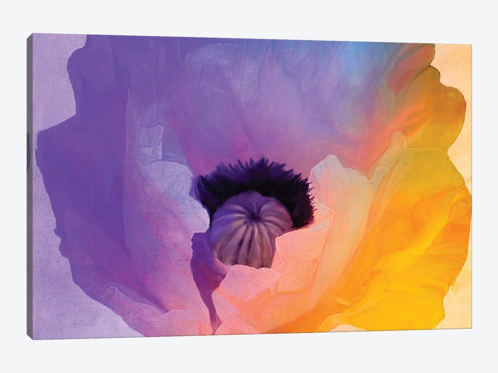 Poppy Gradient III by Color Bakery 1-piece Canvas Art Print