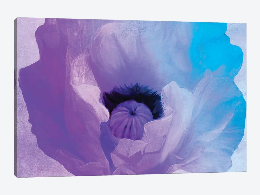 Poppy Gradient IV by Color Bakery 1-piece Canvas Wall Art