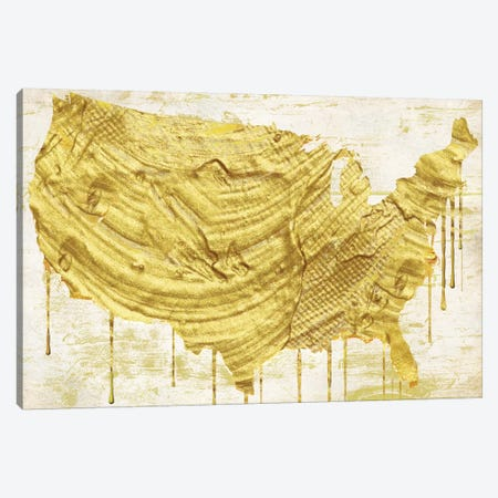 American Dream III Canvas Print #CBY7} by Color Bakery Canvas Art