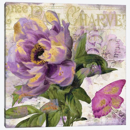 Purple Peony Canvas Print #CBY818} by Color Bakery Art Print