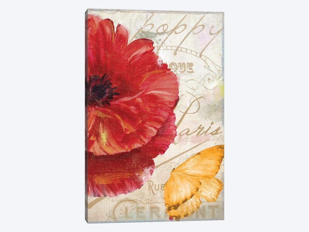 Red Poppy Canvas Art Print By Color Bakery Icanvas