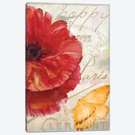 Red Poppy Canvas Print #CBY819} by Color Bakery Art Print