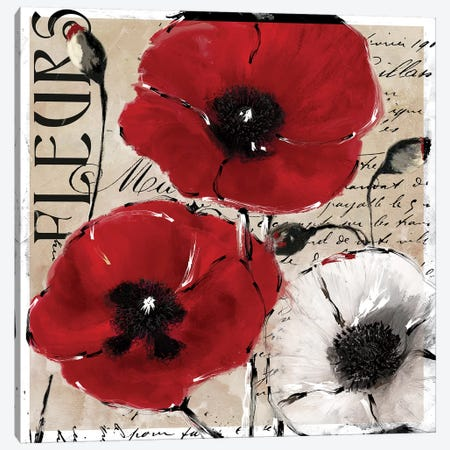 Rouge I Canvas Print #CBY837} by Color Bakery Canvas Art