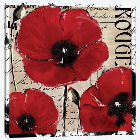 Rouge II Canvas Print #CBY838} by Color Bakery Canvas Print