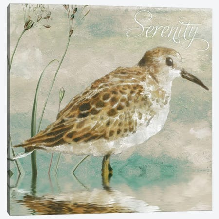 Sand Piper I Canvas Print #CBY857} by Color Bakery Canvas Wall Art
