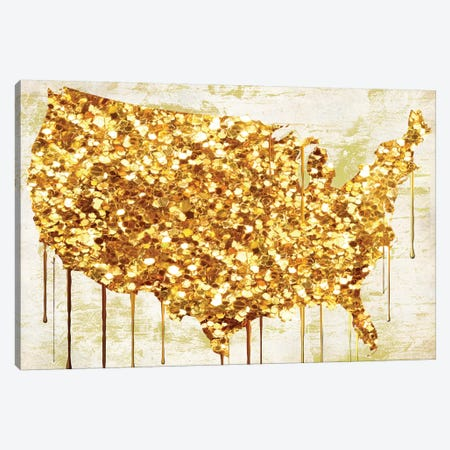 American Dream IV Canvas Print #CBY8} by Color Bakery Art Print