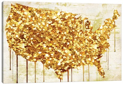 American Dream IV Canvas Art Print