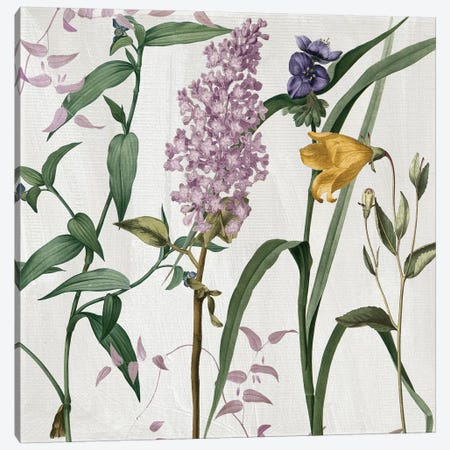 Softly II 3-Piece Canvas #CBY910} by Color Bakery Canvas Art