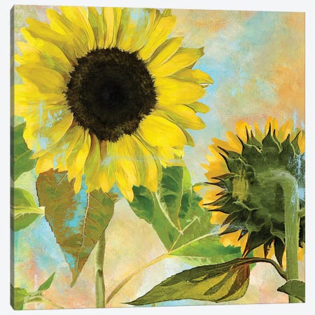 Soleil I Canvas Print #CBY911} by Color Bakery Canvas Wall Art
