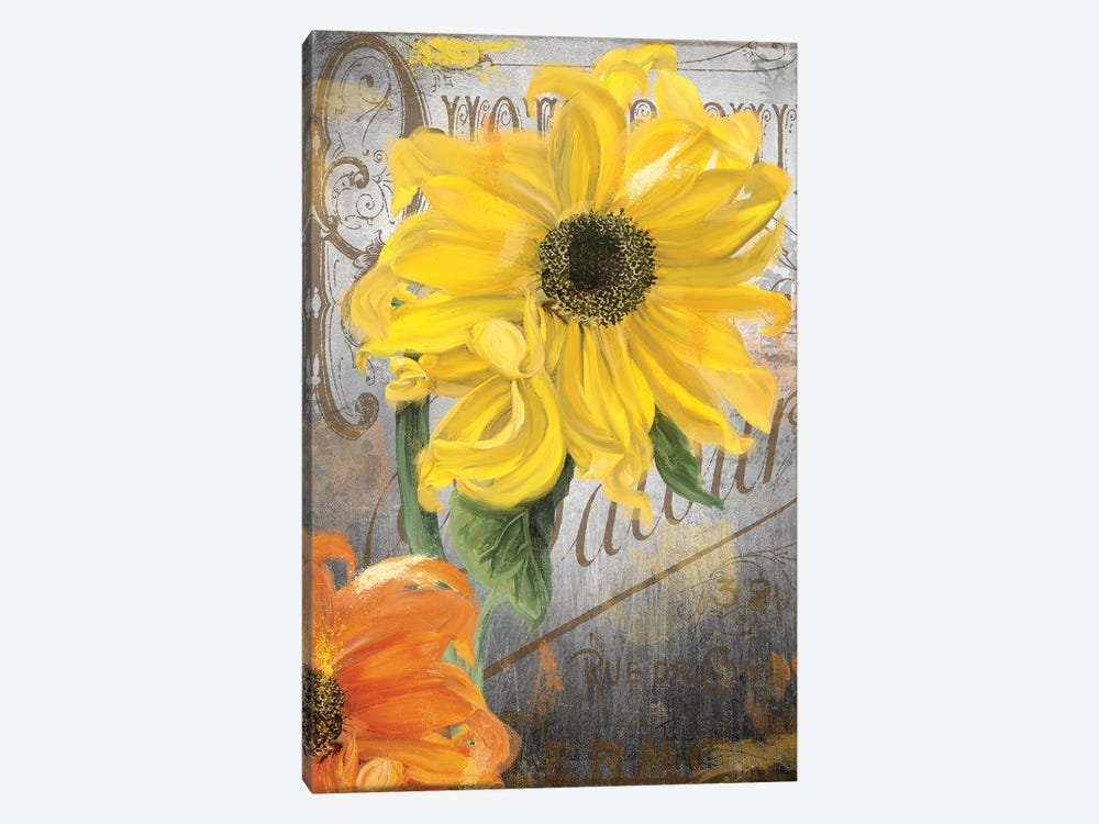 Sunflower Studio by Color Bakery 1-piece Art Print