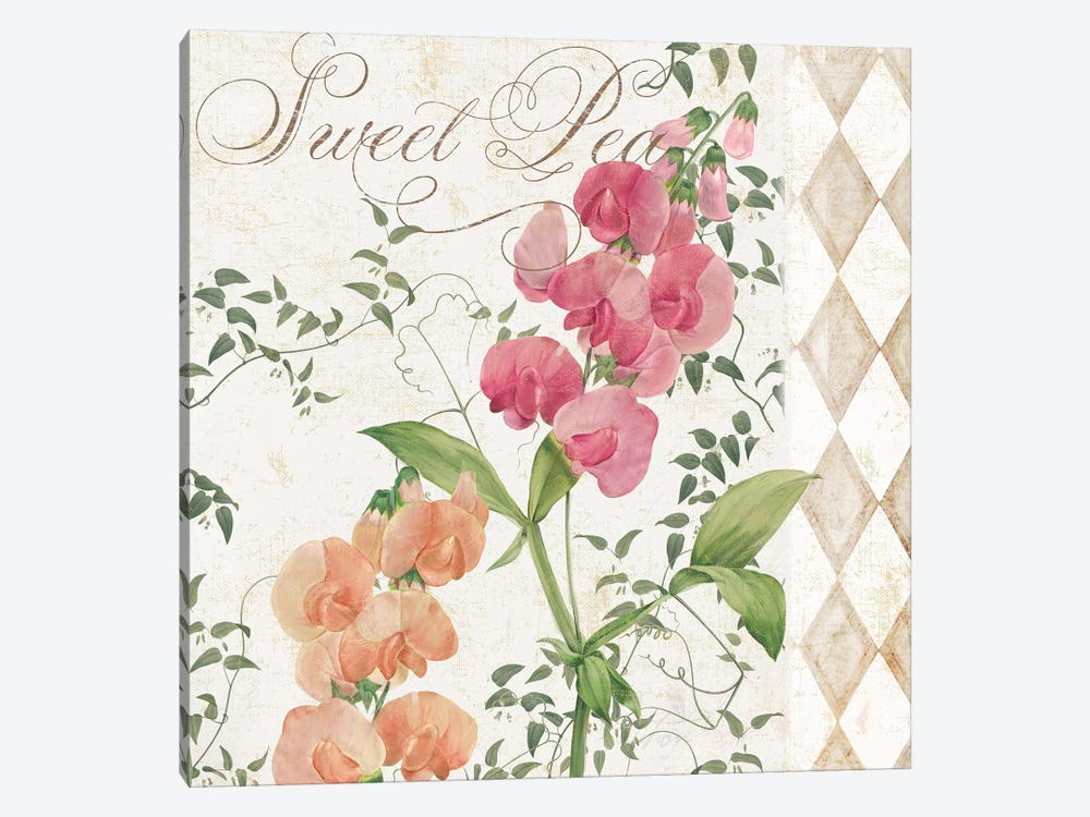 Sweet Pea by Color Bakery 1-piece Canvas Print