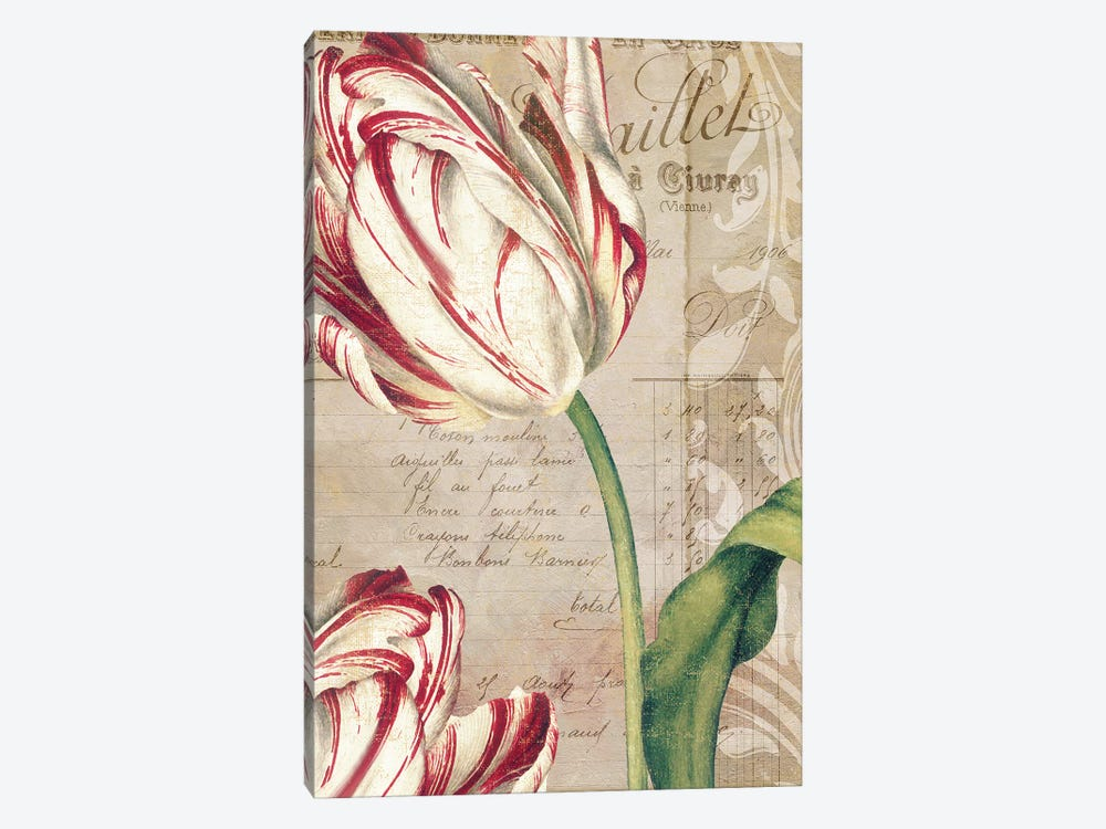 Tulips by Color Bakery 1-piece Canvas Wall Art