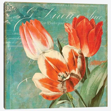 Tulips Ablaze II Canvas Print #CBY981} by Color Bakery Canvas Art Print