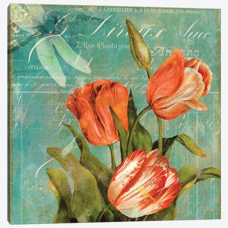 Tulips Ablaze III Canvas Print #CBY982} by Color Bakery Canvas Art Print