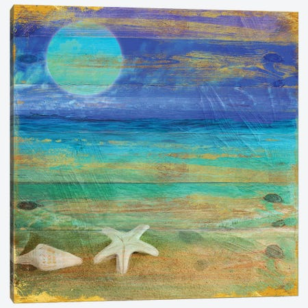 Turquoise Moon Night Canvas Print #CBY990} by Color Bakery Canvas Wall Art