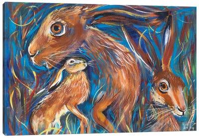 Hares Canvas Art Print