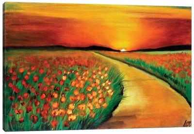 Poppy Field At Sunset Canvas Art Print