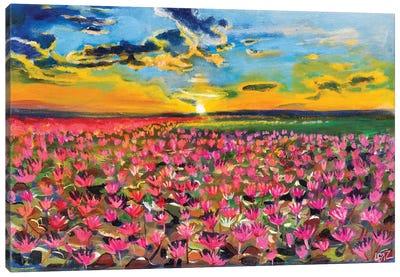 Lily Pond Sunrise Canvas Art Print